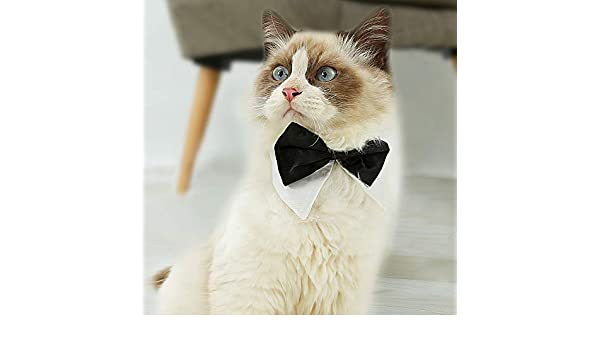 Decdeal Corbata de Mascotas Arco Nudo Ajustable para Perros Gatos ...