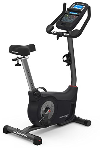 upright fan bike - 8