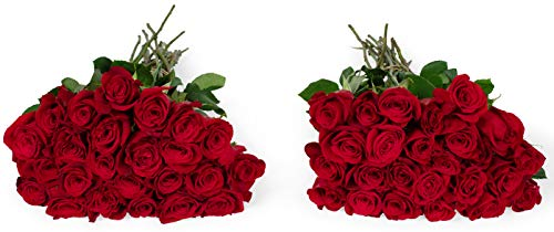 Benchmark Bouquets 50 Red Roses Farm Direct (Fresh Cut Flowers)