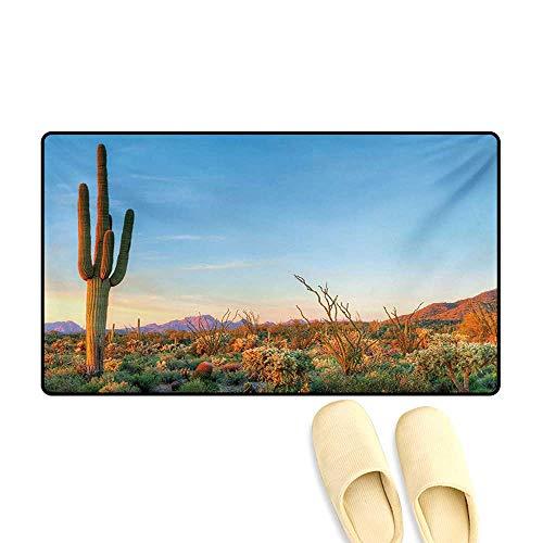 "Door Mats,Sun Goes Down in Desert Prickly Pear Cactus Southwest Texas National Park,Bath Mat Bathroom Mat with Non Slip,Orange Blue Green,32""x48"""