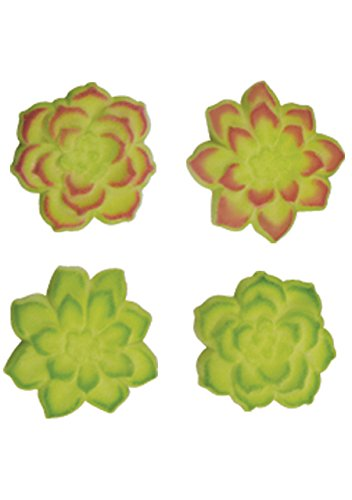 Succulent Assortment Sugar Toppers Decorations Birthday Cupcake Cookies Party 12 Count