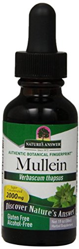 Nature's Answer Alcohol Free Mullen Leaf, 1 Ounce, 2 Count