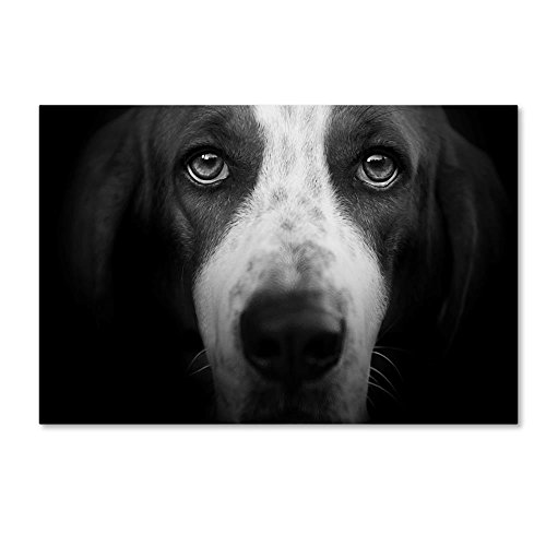 Basset Hound by Lori Hutchison, 22x32-Inch Canvas Wall Art (Portrait Hound Basset)