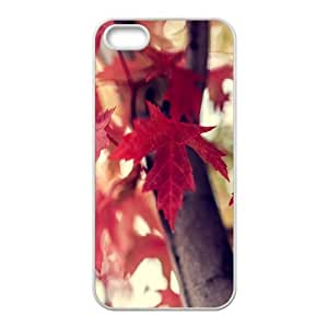 Bloomingbluerose Red Flower IPhone 5,5S Cases Red Maple Leaves Tree, [White]