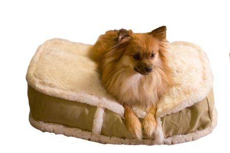 K9 Ballistics Luxury Rectangle Dog Bed