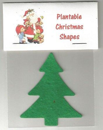 Plantable Christmas Tree.Amazon Com Set Of 6 Plantable Christmas Tree Shape Handouts