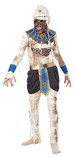 California Costumes Pharaoh's Revenge Costume, One Color, 8-10 (Kids Mummy Costumes)