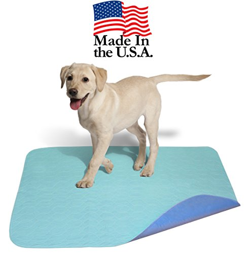 Careoutfit 45 x 36 - Large Laminated Polyurethane Waterproof Reusable/Quilted Washable Large Dog/Puppy Training Travel Pee Pads/Dog Bed Mat