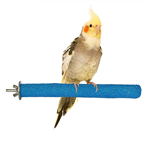 (RYPET Bird Sand Perch - Natural Wood Rough-surfaced Parrot Perch for Small and Medium Parakeet Cockatiel Conure Lovebird Finch)