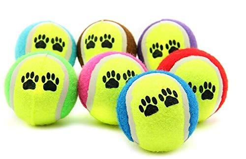 AntCompany Pet-Only Bella Abbastanza Bella Moda Comfortable7 Pack Tennis Pet Toys Consegna Casuale di colore Sicurezza
