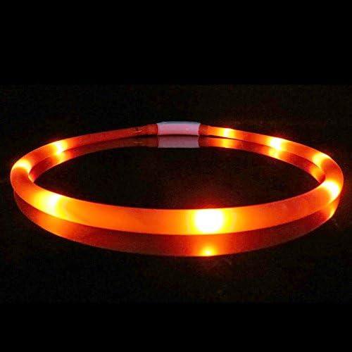 eamqrkt - Collar Luminoso para Perro con luz LED USB, de Silicona ...