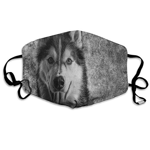 ZHOUSUN Dustproof Anti-Bacterial Washable Reusable Vintage Wolf Dog Retro Mouth Cover Mask Respirator Germ Protective Breath Healthy Safety Warm Windproof Mask ()