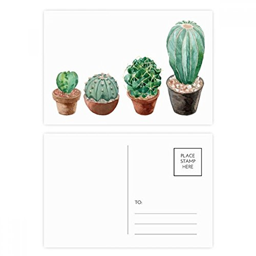 Succulents Cactus Potted Plant Illustration Postcard Set Birthday Thanks Card Mailing Side 20pcs