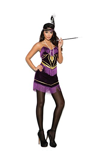 20s Burlesque Costume (Women's Sexy 1920s Flapper Dress Adult Role Play Costume)