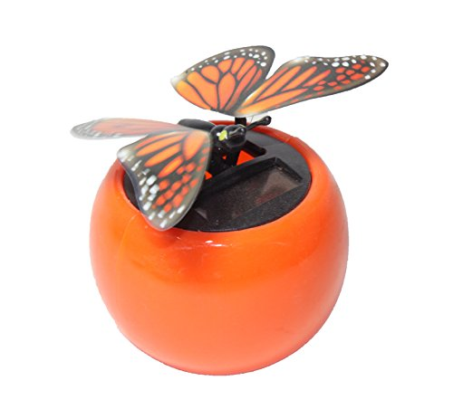 Wings Dancing Butterfly Flying Orange product image