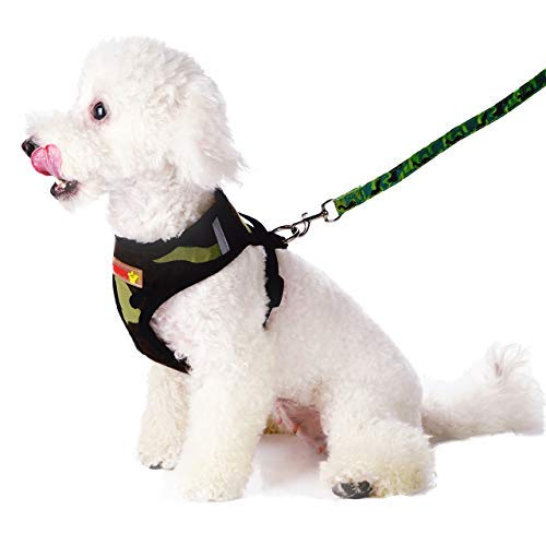 ss and Leash,Breathable Adjustable Pet Vest Harness Leash Set for Cats and Dogs,No-Pull and No Choke Easy Control Cat Harness and Small Dog Harness for Pet Walking Training ()