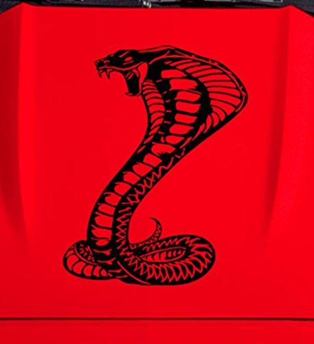 Clausen's World Cobra Snake Hood Car Decal - Vinyl Graphics 35.75