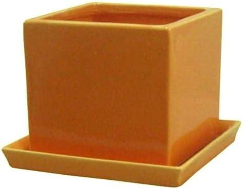 インテリアポット タリーズ キューブ イエロー 14cm 皿付 (穴有) 2個入り 植木鉢
