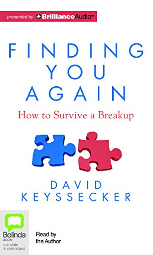 Finding You Again: How to Survive a Breakup by Bolinda Audio