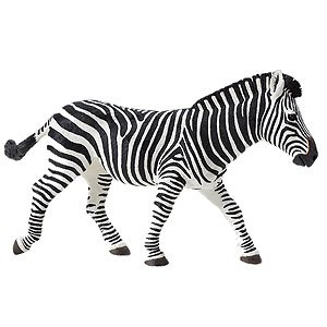 Safari Ltd Wildlife Wonders Zebra