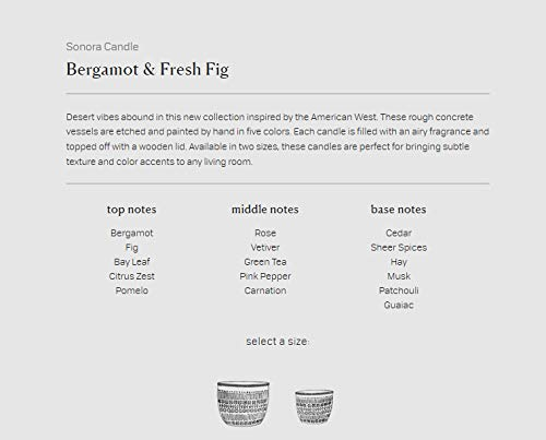 Bergamot and Fresh Fig Paddywax Candles Sonora Collection Scented Soy Wax Candle 10-Ounce