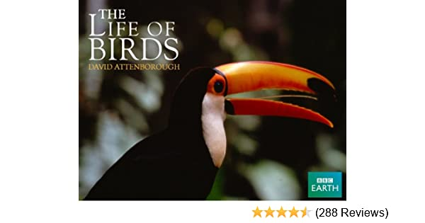 Amazon com: Watch Life of Birds | Prime Video