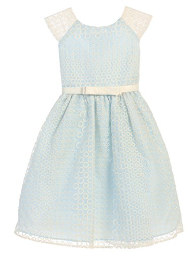 Sweet Kids Circle Embroidered Organza Little GIrls' Special Occasion Dress, 2, Blue (Embroidered Organza Dress)