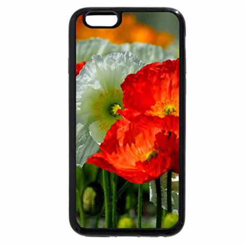 iPhone 6S / iPhone 6 Case (Black) ROW of BLOSSOMS