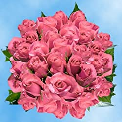 100 Fresh Cut Pink Roses for Valentine's Day | Kiko Roses | Fresh Flowers Express Delivery | The Perfect Valentine's Day Gift