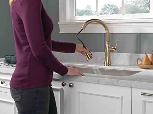 Delta Faucet Cassidy Single-Handle Kitchen Sink Faucet with Pull Down Sprayer, ShieldSpray Technology and Magnetic Docking Spray Head, Champagne Bronze 9197-CZ-DST
