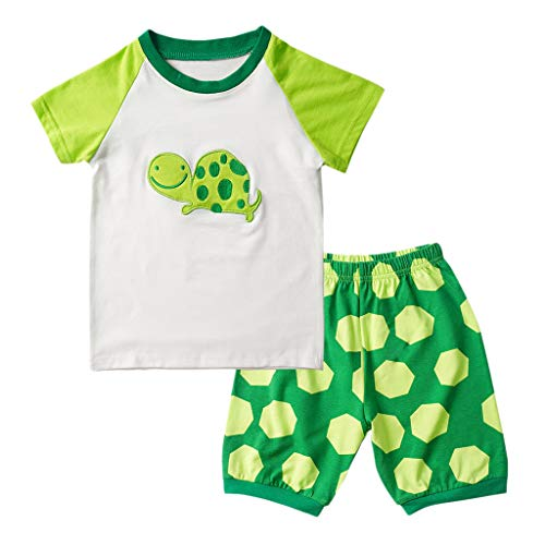 WOCACHI Toddler Baby Boys Clothes, Kids Baby Boy Girls Pajamas Cartoon Printed Tops Shorts Pants Outfits Set Back to School Easter Egg Costume Parade Bunny Lily Eggs Roll Basket Mother's Day ()