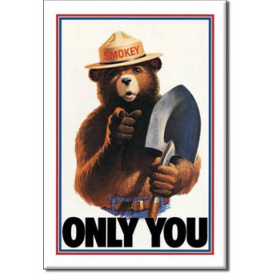 2x3-smokey-the-bear-only-you-can-prevent-forest-fires-retro-vintage-locker-refrigerator-magnet