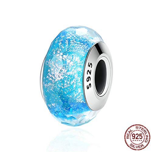 WANZIJING Charms Bead for Women, S925 Sterling Silver Beads Lampwork Glass Beads for Jewelry Making Fits Bracelet Necklace