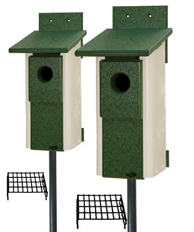 Recycled Plastic Two Toned Bluebird House Package