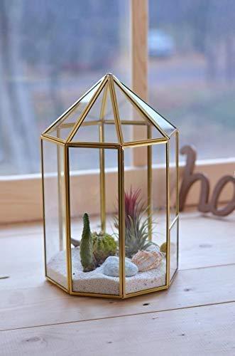 Amazon Gold Wedding Centerpieces Geometric Terrarium Containers