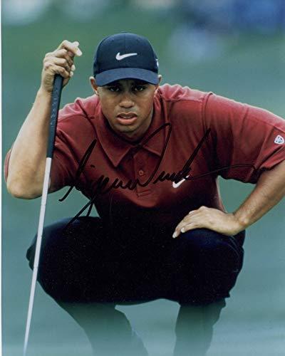 (Tiger Woods - Reprint 8x10 inch Photograph - PGA Golf )