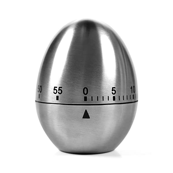 Kitchen Timer Manual, LEMEGO Stainless Steel Egg Shaped Mechanical Rotating Alarm with 60 Minutes for Cooking 41RJsxpCJSL