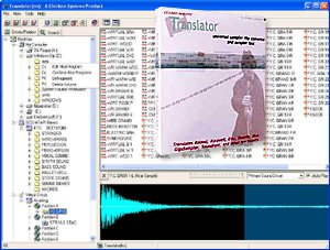 Chicken Systems Translator Sample Format Conversion Software