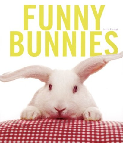 Funny Bunnies by