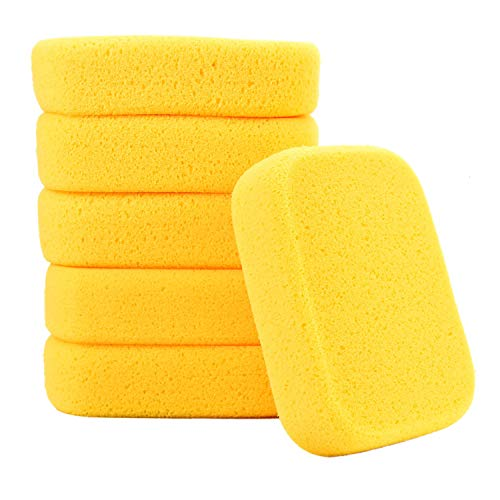 Best Paint Sponges