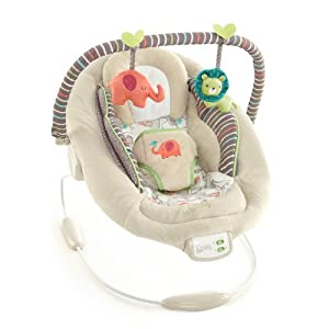 comfort harmony cradling bouncer in cozy kingdom bright starts baby