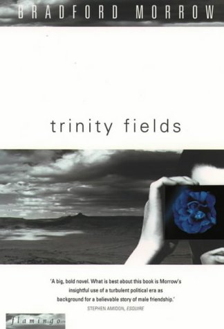 Trinity Fields - APPROVED