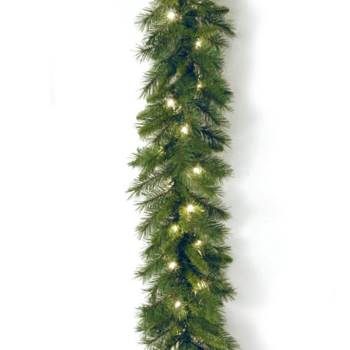 National Tree 9 Foot by 10 Inch Winchester Pine Garland with 50 Clear Lights (WCH7-300-9A-1) (Range Garland Outdoor)