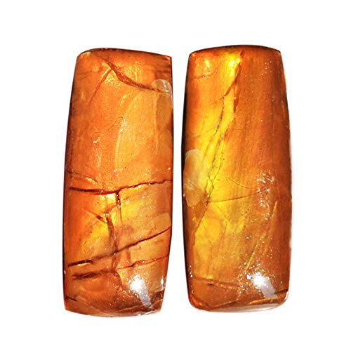 (ABC Jewelry Mart 100% Natural Ammolite Red Fire Pair Cabochon, Earring Pair Stone, Yellow Flashy Ammonites, Size 25x10x5 MM AG-12138)