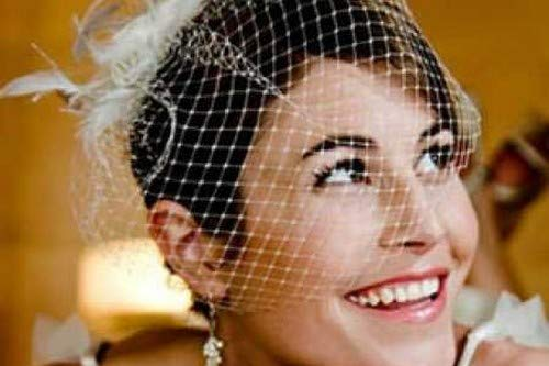 (Darice VL122W Birdcage Wedding Veil Headpiece with Feather Accent, White)