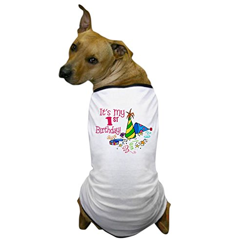 CafePress Birthday T Shirt Clothing Costume
