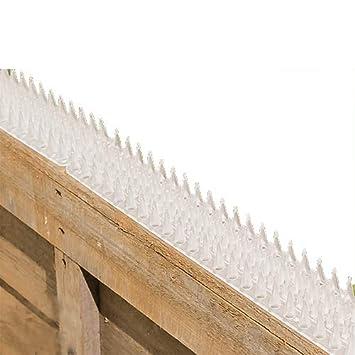 Valla para pared y pinchos de seguridad, transparente - 2 unidades (1 m): Amazon.es: Jardín