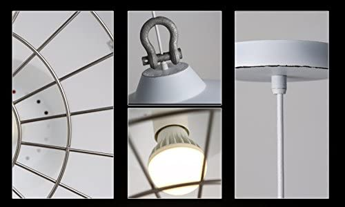 Shade Hanging Ceiling Light