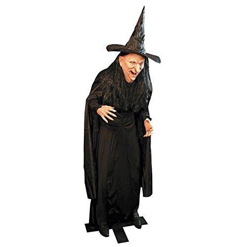 Morris Costumes DU2423 Witch Legend Prop (Underwraps Decor)