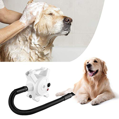 Pedy Dog Hair Dryer 3.2 HP Stepless Adjustable Speed Blow Dryers for Dogs Grooming with Heater 2400W Pet Dryer with 3 Different Nozzles by Pedy (Image #7)